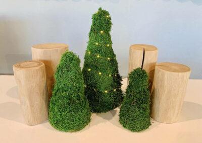 Mos kerstboom