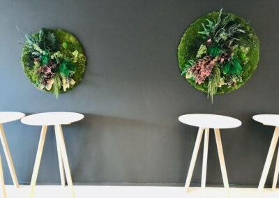geconserveerde planten